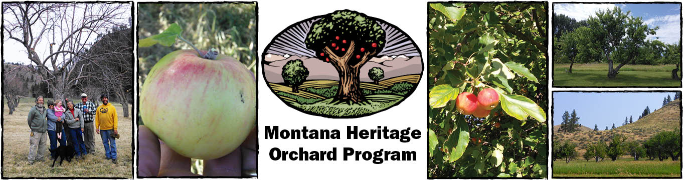 Heritage Orchard Banner Photo